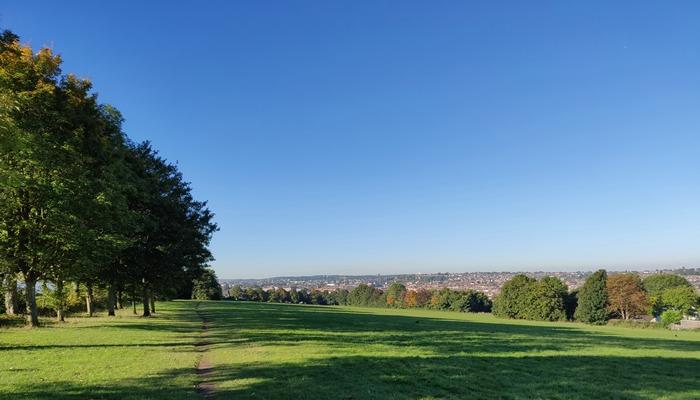 Walk and Talk Therapy, Bristol